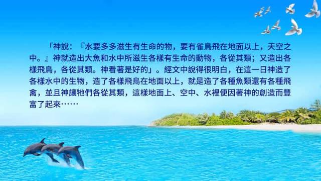 海水,海豚,飛鳥