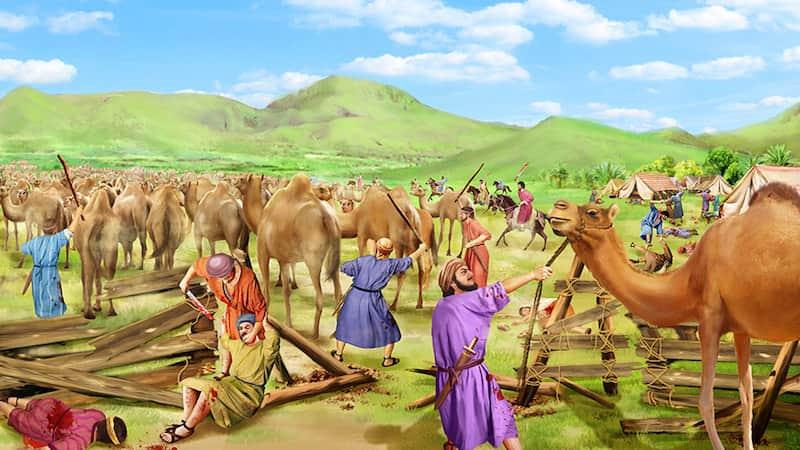 耶和華,約伯,聖經,敬畏神,遠離惡,試煉