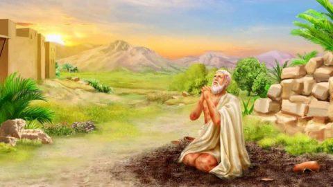 約伯記,咒詛,生日,聖經故事