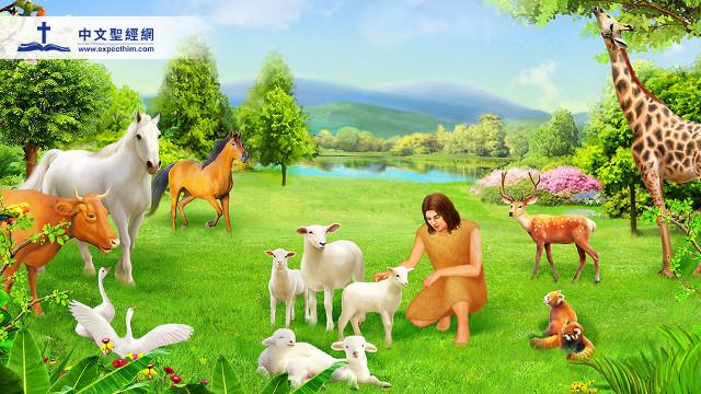 亞當給動物取名字