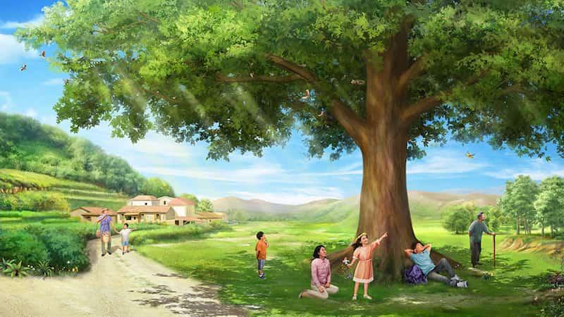 經歷,夏日,生存,環境,規律,萬物,陽光,源頭