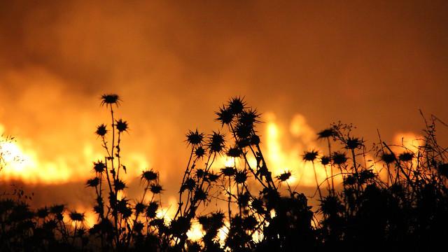 在火災中看到神的奇妙作為