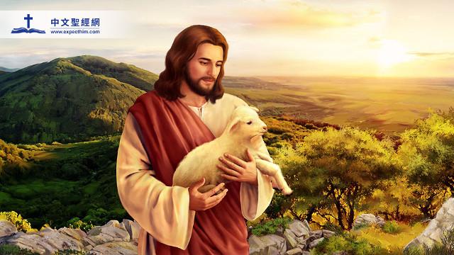 迷途的小羊回到牧人的身旁