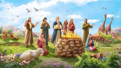 神與挪亞立約