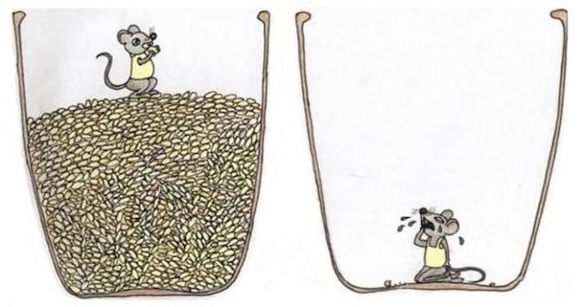 老鼠與米缸
