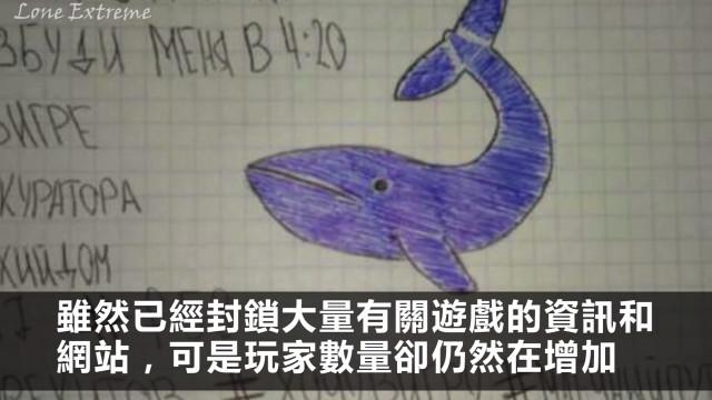 「藍鯨」來襲,誰敢挑戰?
