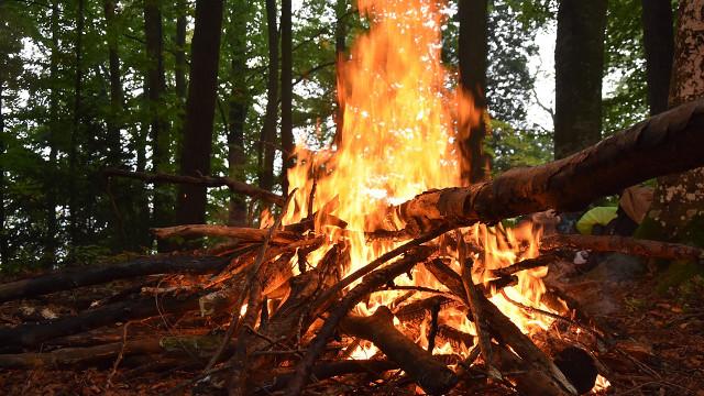 「一把大火」背後的奇妙恩典