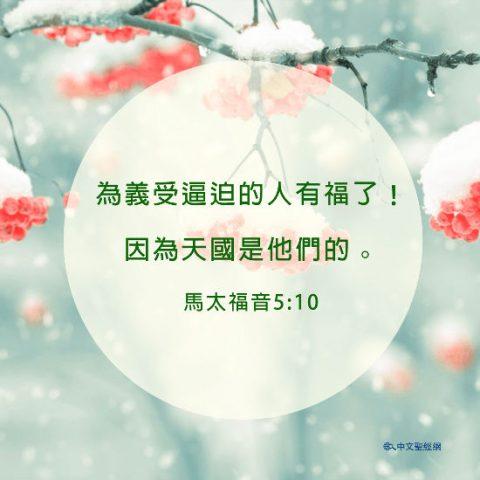 聖經卡片,馬太福音