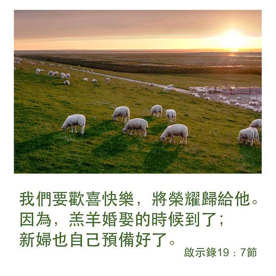 羔羊婚娶 新婦 啓示錄 歡喜快樂