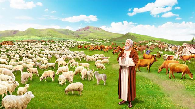 約伯,牛羊