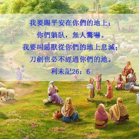 平安,聖經金句卡片