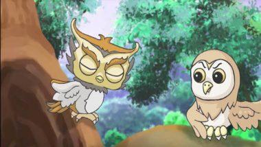 貓頭鷹 動畫 寓意短片