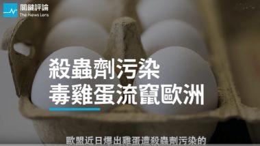 雞蛋,毒雞蛋