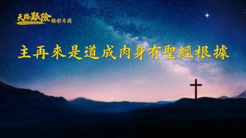 福音電影《天路艱險》精彩片段:主再來是道成肉身有聖經根據