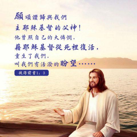 盼望,聖經金句圖片