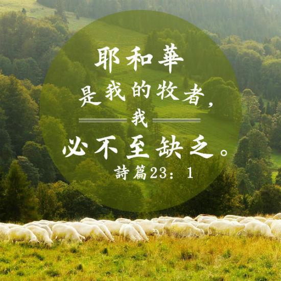 耶和華 牧者 聖經金句