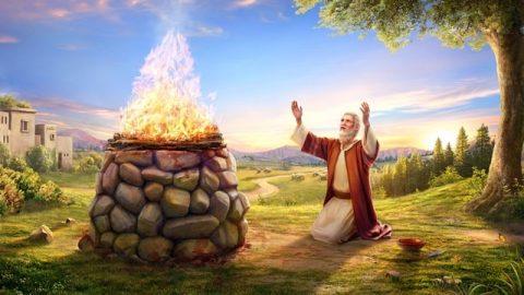 聖經及神對約伯評價的話
