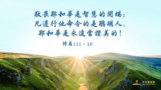 智慧-聖經金句