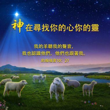 神在尋找你的心你的靈-聖經金句圖片