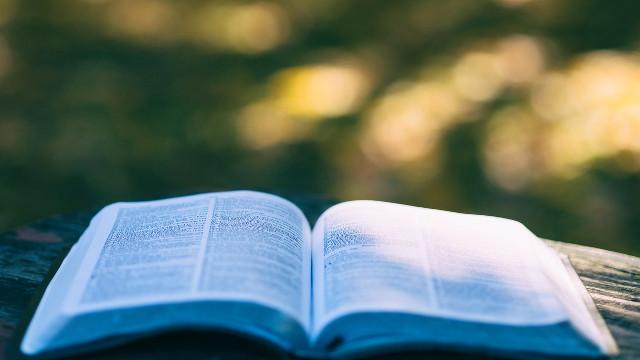 聖經裡都是神的話嗎?