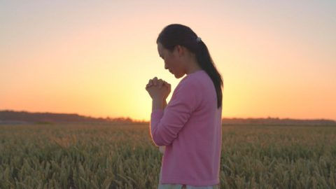 基督徒站在麥田裡禱告