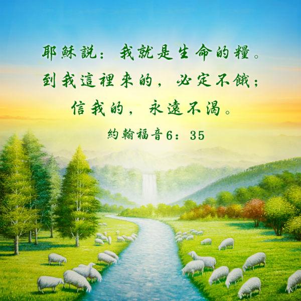 主耶穌是生命的糧