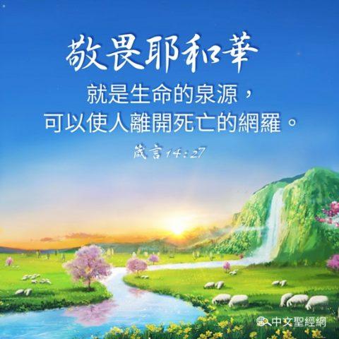 敬畏耶和華就是生命的泉源-聖經金句圖片