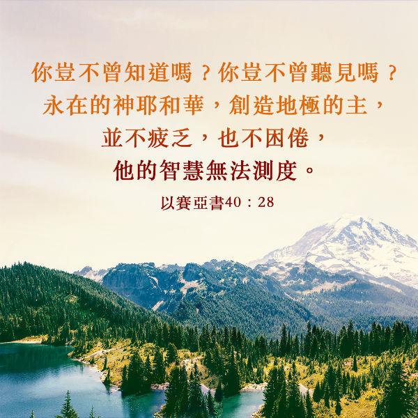 聖經經文,聖經卡片,神的智慧