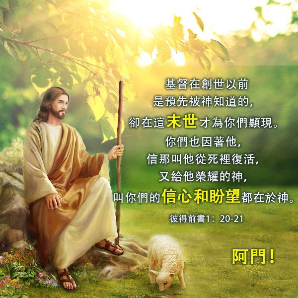 主耶穌,綿羊,聖經卡片