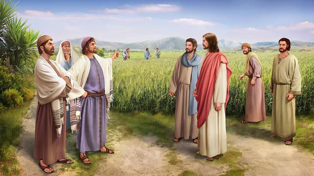 法利賽人,主耶穌,門徒