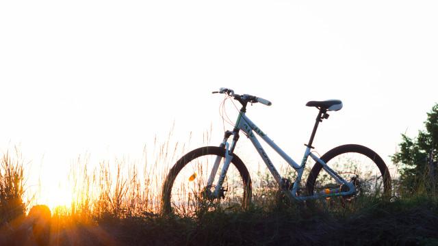 自行車,單車,日落