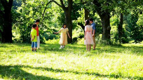 公園,孩子們