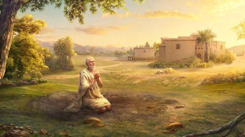 約伯在試煉中咒詛自己的生日,神為何還稱他為完全人?