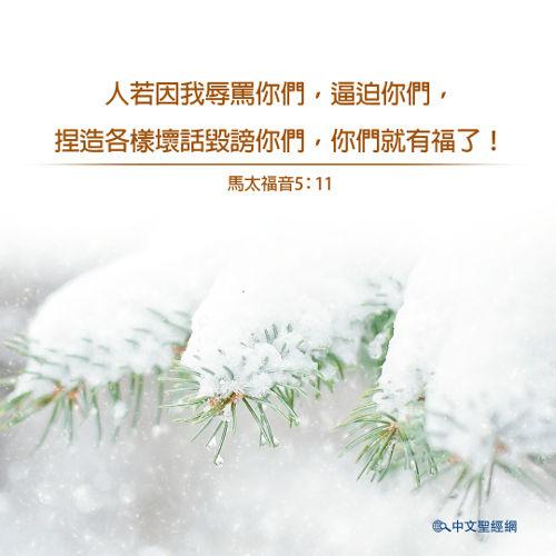 馬太福音,雪,靈修經文