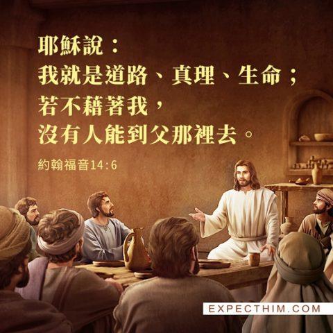 耶穌說我就是道路、真理、生命;若不藉著我,沒有人能到父那裡去。