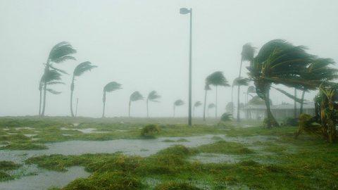 特大颶風猛然襲擊,生死危難中我卻安然無恙