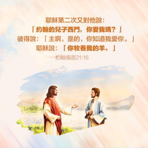 約翰福音21:16-靈修經文