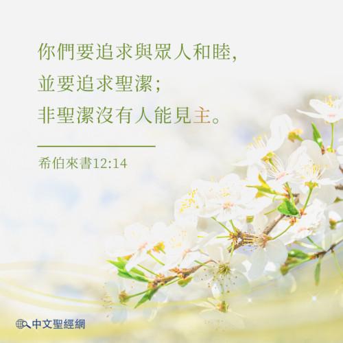 希伯來書12:14-靈修經文