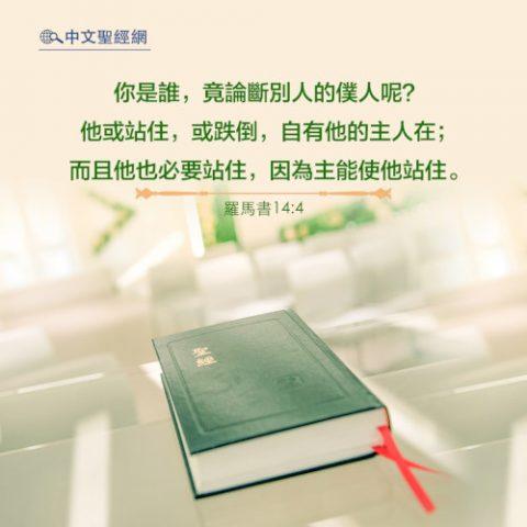 羅馬書14:4-靈修經文(