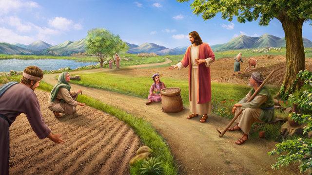 主耶穌為什麼要道成肉身作工