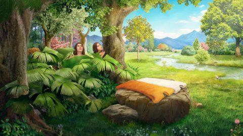 神用皮子給亞當和夏娃做衣服穿