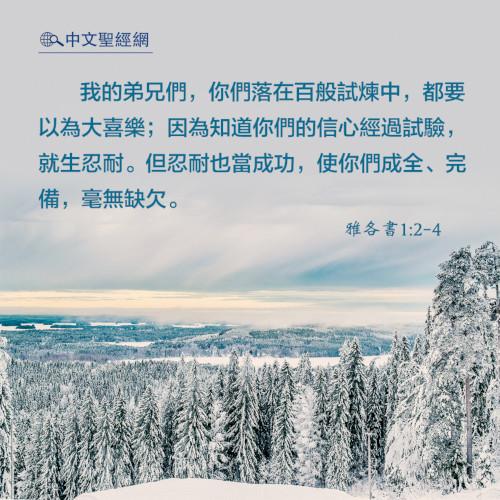 雅各書1:2-4-靈修經文