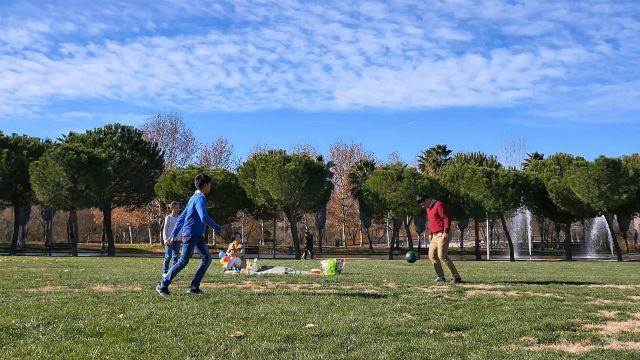 公園,親子,踢足球
