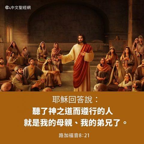 主耶穌講道:「聽了神之道而遵行的人就是我的母親,我的弟兄了。」