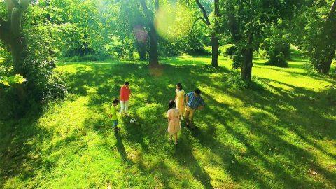 公園,家庭