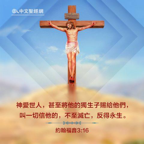 約翰福音3:16-靈修經文