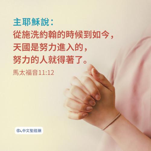 馬太福音11:12-靈修經文