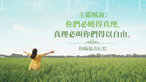 聖經卡片-約翰福音8:32
