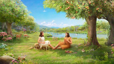 人類怎樣才能恢復伊甸園的生活?-探討信箱