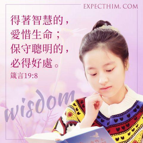 聖經卡片-箴言19:8